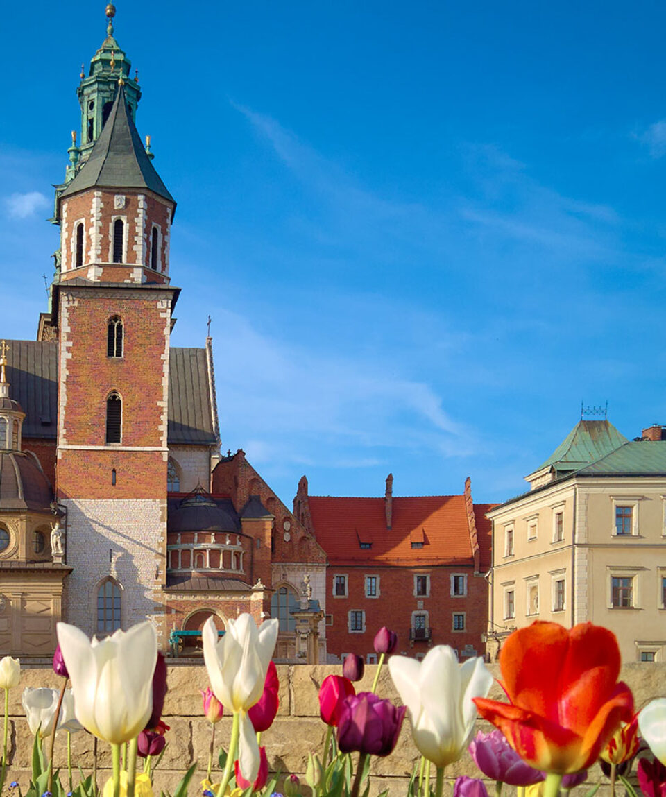 Copertina Cracovia